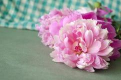 Υπόβαθρο με τα ρόδινα peonies λεπτομερές ανασκόπηση floral διάνυσμα σχεδίων Floral σύνθεση με τα peony λουλούδια Στοκ Φωτογραφίες