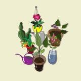 Υπόβαθρο με τα σπιτικά λουλούδια και τα δοχεία ποτίσματος Στοκ Φωτογραφίες