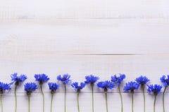 Υπόβαθρο με τα φρέσκα cornflowers σε ένα ελαφρύ ξύλινο επιτραπέζιο υπόβαθρο τοποθετήστε το κείμενο Στοκ Φωτογραφία