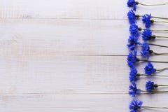 Υπόβαθρο με τα φρέσκα cornflowers σε ένα ελαφρύ ξύλινο επιτραπέζιο υπόβαθρο τοποθετήστε το κείμενο Στοκ Εικόνα