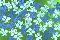 Υπόβαθρο με τα φύλλα bluie πέρα από το πρασινωπό υπόβαθρο Στοκ Φωτογραφία