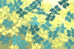 Υπόβαθρο με τα φύλλα bluie πέρα από το φωτεινό υπόβαθρο Στοκ Εικόνες