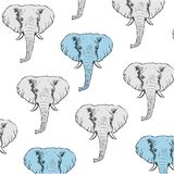 Υπόβαθρο με τους γκρίζους και μπλε συρμένους χέρι ελέφαντες Στοκ Φωτογραφίες