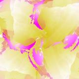 Υπόβαθρο με τους λεκέδες watercolor Απεικόνιση στα ιώδη, κίτρινα και άσπρα χρώματα Στοκ Εικόνες