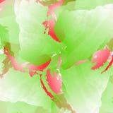 Υπόβαθρο με τους λεκέδες watercolor Απεικόνιση στα κόκκινα, πράσινα και άσπρα χρώματα Στοκ Εικόνες
