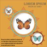 Υπόβαθρο με τους κύκλους και τις πεταλούδες Στοκ Εικόνες