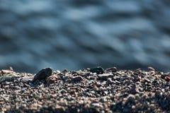 Υπόβαθρο με το αμμοχάλικο και το θολωμένο νερό στοκ φωτογραφία με δικαίωμα ελεύθερης χρήσης