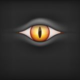 Υπόβαθρο με το ζωικό μάτι επίσης corel σύρετε το διάνυσμα απεικόνισης Στοκ Εικόνες