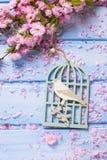Υπόβαθρο με το διακοσμητικό κλουβί με το πουλί και το κομψό ρόδινο ΛΦ Στοκ Εικόνα