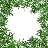 Υπόβαθρο με το ρεαλιστικό πράσινο κλάδο δέντρων έλατου Θέση για το κείμενο, συγχαρητήρια Χριστούγεννα, νέο σύμβολο έτους Στοκ Εικόνες