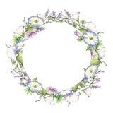 Υπόβαθρο με το watercolor που σύρει τα άγρια λουλούδια, στρογγυλό floral πλαίσιο, στεφάνι με τις χρωματισμένες εγκαταστάσεις τομέ ελεύθερη απεικόνιση δικαιώματος