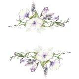 Υπόβαθρο με το watercolor που σύρει τα άγρια λουλούδια, στρογγυλό floral πλαίσιο, στεφάνι με τις χρωματισμένες εγκαταστάσεις τομέ απεικόνιση αποθεμάτων