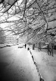 Υπόβαθρο οδών χειμερινών πόλεων Στοκ Εικόνα