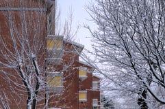 Υπόβαθρο οικοδόμησης τούβλου και χιονώδες πάρκο Στοκ εικόνα με δικαίωμα ελεύθερης χρήσης