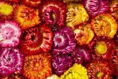 Υπόβαθρο λουλουδιών αχύρου Στοκ εικόνα με δικαίωμα ελεύθερης χρήσης