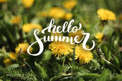 Υπόβαθρο λουλουδιών και γειά σου θερινή εγγραφή Στοκ φωτογραφία με δικαίωμα ελεύθερης χρήσης