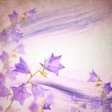 Υπόβαθρο λουλουδιών κουδουνιών Στοκ Φωτογραφίες
