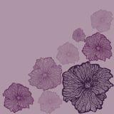 Υπόβαθρο λουλουδιών κρητιδογραφιών Στοκ Εικόνες