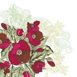 Υπόβαθρο λουλουδιών με το χέρι που σύρεται Στοκ Φωτογραφίες