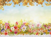 Υπόβαθρο λουλουδιών φθινοπώρου με το άσπρο ξύλινο πεζούλι, το μπλε ουρανό και το χρυσό φύλλωμα Στοκ εικόνα με δικαίωμα ελεύθερης χρήσης