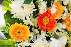 Υπόβαθρο λουλουδιών χρυσάνθεμων ανθοδεσμών Στοκ φωτογραφίες με δικαίωμα ελεύθερης χρήσης
