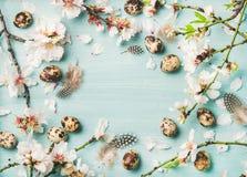 Υπόβαθρο Πάσχας με τα αυγά και τα λουλούδια ανθών αμυγδάλων ανοίξεων Στοκ Εικόνα