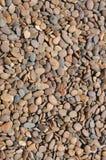 Υπόβαθρο πετρών Pubble Στοκ Φωτογραφίες