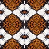 Υπόβαθρο που δημιουργείται από τα φτερά πεταλούδων Στοκ Εικόνα