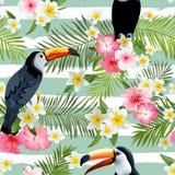 Υπόβαθρο πουλιών Toucan pattern retro ανασκόπηση τροπική Στοκ φωτογραφία με δικαίωμα ελεύθερης χρήσης