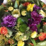 υπόβαθρο που καταπλήσσει τη φωτεινή ανθοδέσμη των πολύχρωμων θερινών λουλουδιών με τις κίτρινες τουλίπες, asteroids Στοκ εικόνα με δικαίωμα ελεύθερης χρήσης