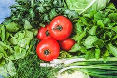 Υπόβαθρο πολλών φρέσκων πράσινων διαφορετικών λαχανικών, χορτάρια α Στοκ Φωτογραφία