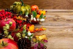 Υπόβαθρο πτώσης με τα μήλα, τα άσπρους μούρα και τους σπόρους, διάστημα αντιγράφων Στοκ εικόνα με δικαίωμα ελεύθερης χρήσης