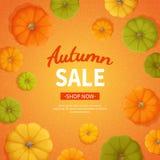Υπόβαθρο πώλησης φθινοπώρου Έκπτωση, πώληση το φθινόπωρο Ιπτάμενο εμβλημάτων με τις κολοκύθες στο πορτοκαλί υπόβαθρο Ειδική εποχι Στοκ Εικόνα
