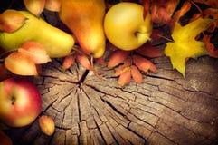 Υπόβαθρο πλαισίων ημέρας των ευχαριστιών Φύλλα, μήλα και αχλάδια φθινοπώρου στοκ φωτογραφία