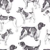 Υπόβαθρο σκυλιών Στοκ εικόνες με δικαίωμα ελεύθερης χρήσης