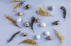 Υπόβαθρο σχεδίων αυγών Πάσχας με τα λουλούδια άνοιξη Τοπ άποψη με το διάστημα αντιγράφων κάρτα Πάσχα ευτυχές Στοκ φωτογραφία με δικαίωμα ελεύθερης χρήσης