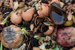 Υπόβαθρο σύνθεσης των σαπίζοντας απορριμάτων κουζινών φρούτων και λαχανικών με eggshells Στοκ φωτογραφία με δικαίωμα ελεύθερης χρήσης