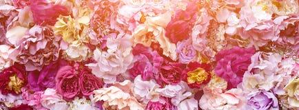 Υπόβαθρο σύστασης λουλουδιών για τη γαμήλια σκηνή Τριαντάφυλλα, peonies και hydrangeas, τεχνητά λουλούδια στον τοίχο Έμβλημα fow Στοκ Φωτογραφίες