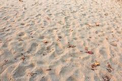 Υπόβαθρο σύστασης παραλιών άμμου στοκ φωτογραφίες με δικαίωμα ελεύθερης χρήσης