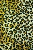 Υπόβαθρο σύστασης σχεδίων δέρματος λεοπαρδάλεων Στοκ Εικόνες