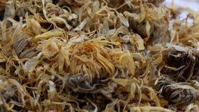 Υπόβαθρο σύστασης του ξηρού calendula λουλουδιών απόθεμα βίντεο