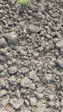 Υπόβαθρο σύστασης χώματος/άμμου αφηρημένη σύσταση Στοκ εικόνα με δικαίωμα ελεύθερης χρήσης
