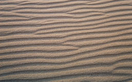 Υπόβαθρο, σύσταση, κύματα της άμμου στο ηλιοβασίλεμα στοκ φωτογραφία με δικαίωμα ελεύθερης χρήσης