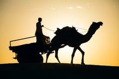 Υπόβαθρο ταξιδιού του Rajasthan - σκιαγραφία καμηλών στους αμμόλοφους Thar της ερήμου στο ηλιοβασίλεμα Στοκ εικόνα με δικαίωμα ελεύθερης χρήσης