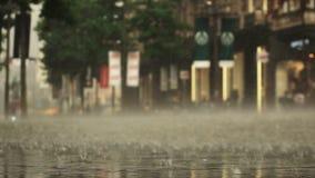 Υπόβαθρο της ημέρας δυνατής βροχής στην οδό πόλεων Πραγματικός - χρόνος Η γυναίκα σε ένα ποδήλατο περνά από Θολωμένο Bokeh Natura απόθεμα βίντεο