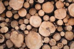 Υπόβαθρο της σύστασης πολτού ξύλου E στοκ εικόνες με δικαίωμα ελεύθερης χρήσης