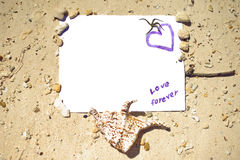 Υπόβαθρο της Shell θάλασσας με το διάστημα για το κείμενο κενά θαλασσινά κοχύλια άμμου εγγράφου μηνυμάτων παραλιών sunglass Στοκ Φωτογραφίες