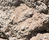 Υπόβαθρο του αμμοχάλικου και της άμμου στοκ εικόνες