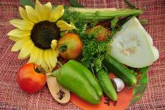 Υπόβαθρο του λαχανικού και του ηλίανθου. Στοκ φωτογραφίες με δικαίωμα ελεύθερης χρήσης
