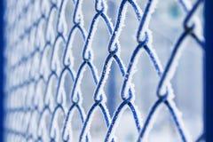 Υπόβαθρο του μπλε πηχακιού μετάλλων πλέγματος που καλύπτεται με τη χνουδωτή άσπρη κραυγή Στοκ Φωτογραφία